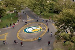 UC Davis Bike Circle